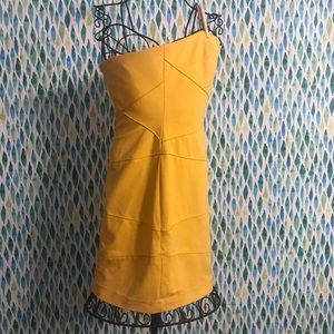 Brand New With Tags Cynthia Steffe dress